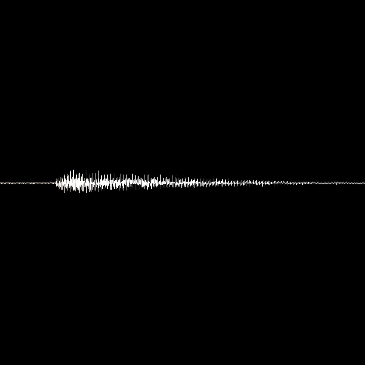 『ゴールデンボンバー振動』収録の『振動』ジャケット
