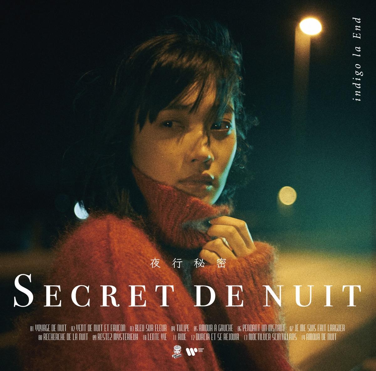 『indigo la End - 晩生 歌詞』収録の『夜行秘密』ジャケット