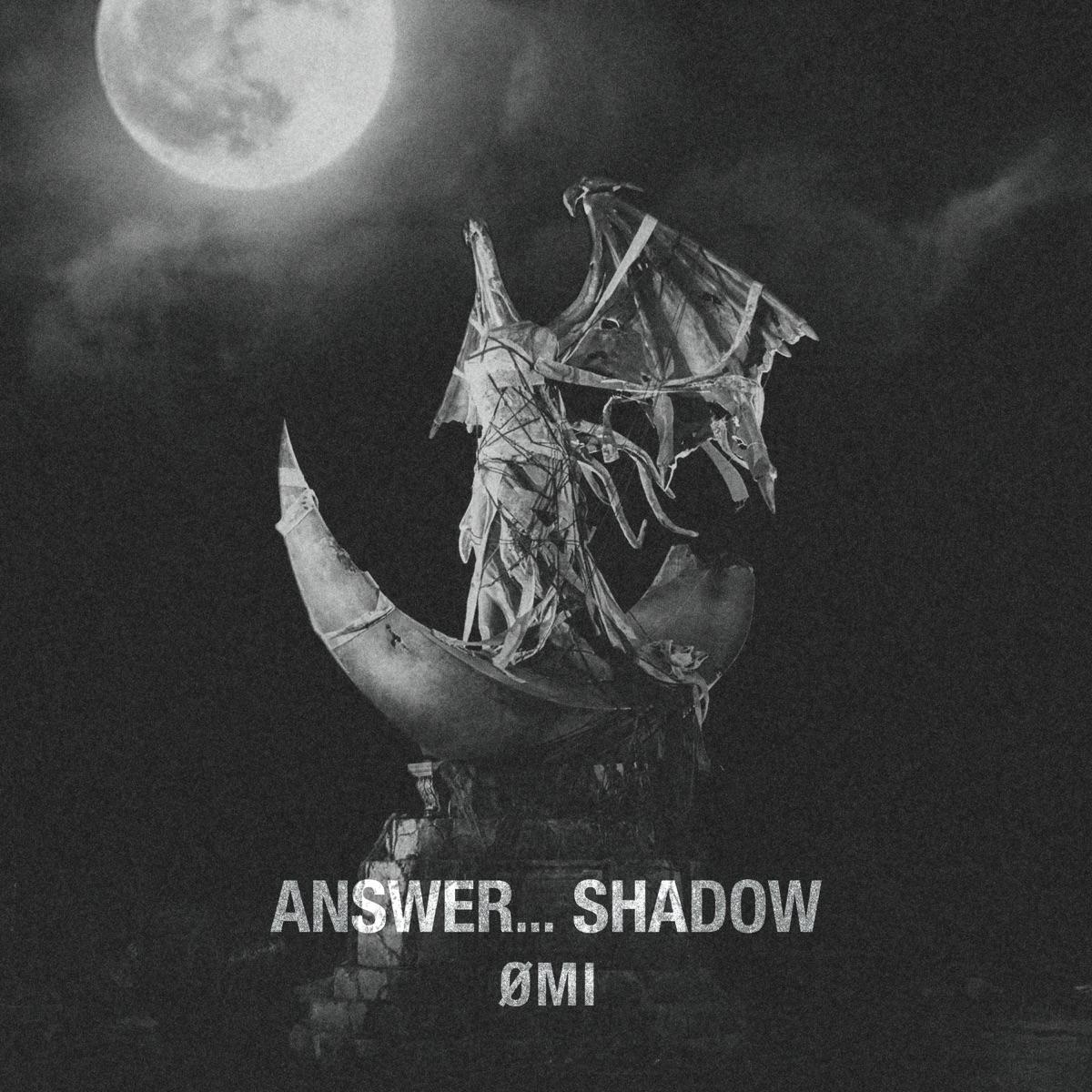 『ØMI - Give up』収録の『ANSWER... SHADOW』ジャケット