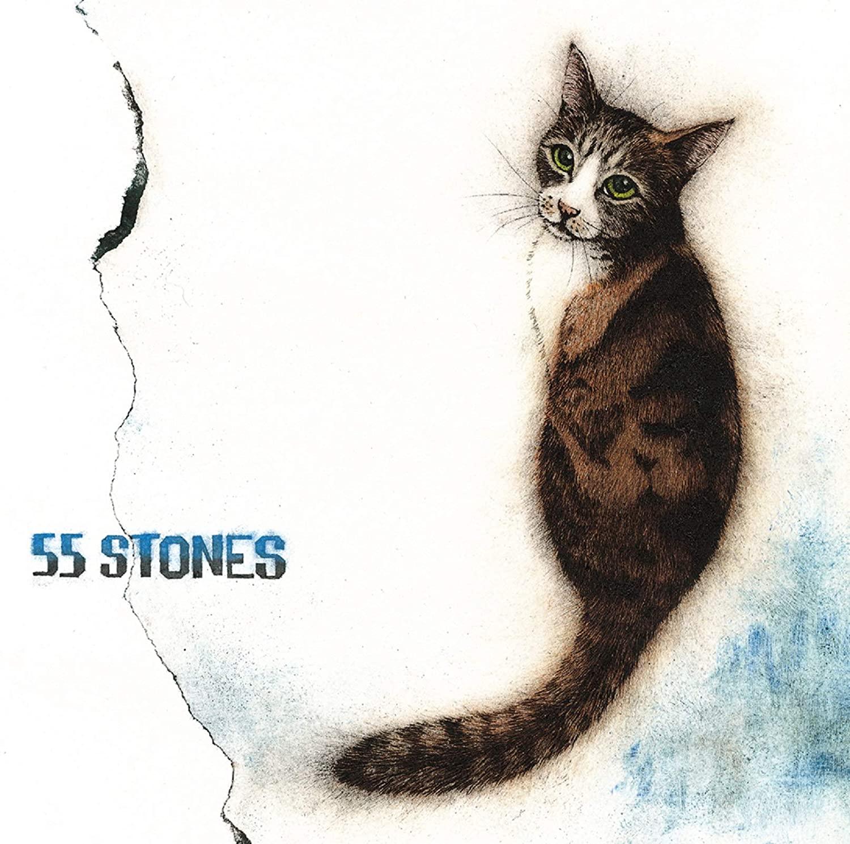 『斉藤和義 - ぐるぐる』収録の『55 STONES』ジャケット