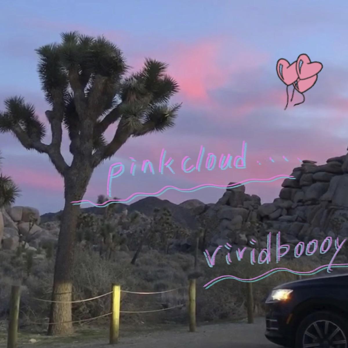 『vividboooy - pinkcloud』収録の『pinkcloud』ジャケット