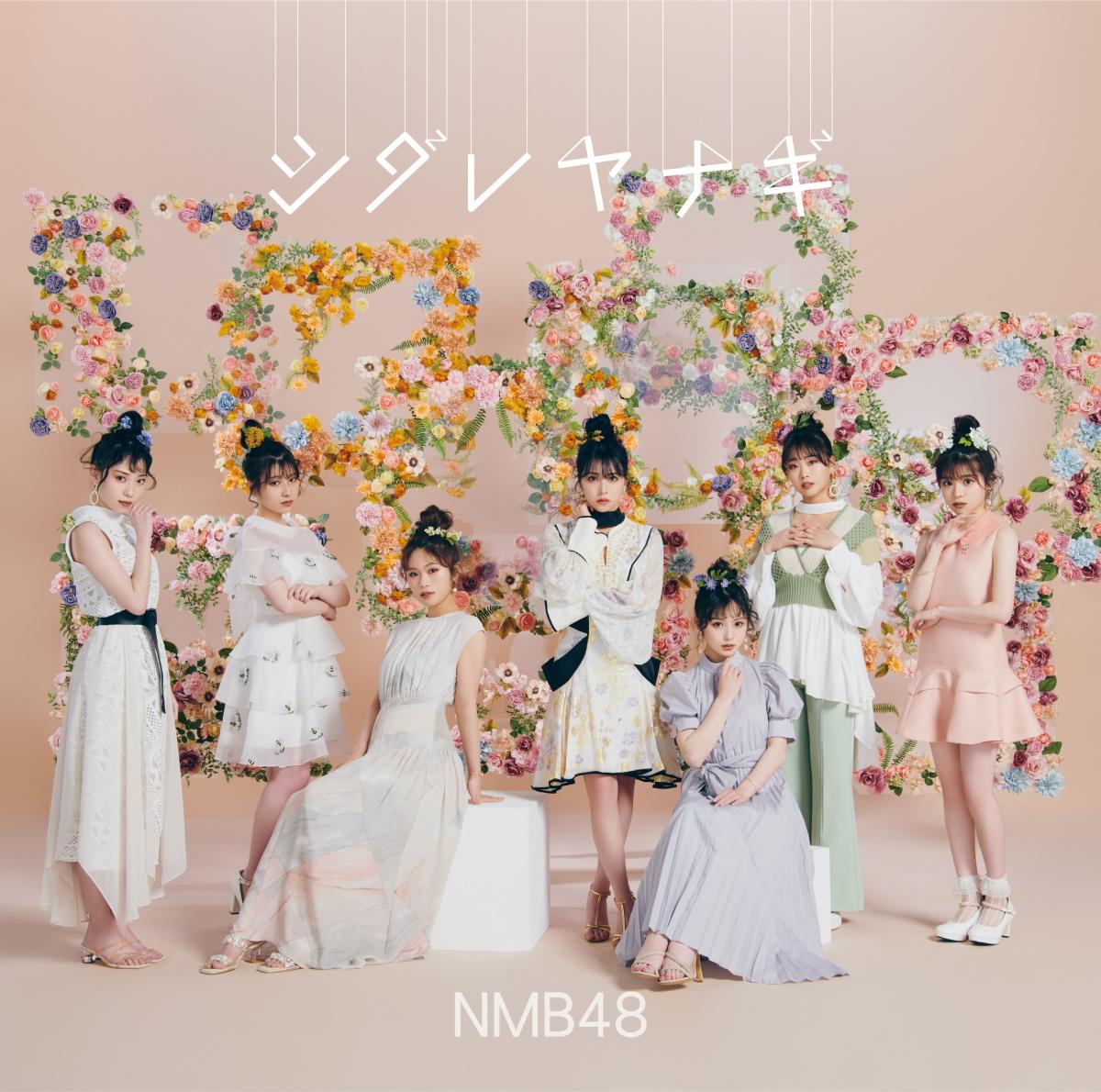 『きゅんmart(NMB48) - 選ばれし者たち』収録の『シダレヤナギ』ジャケット