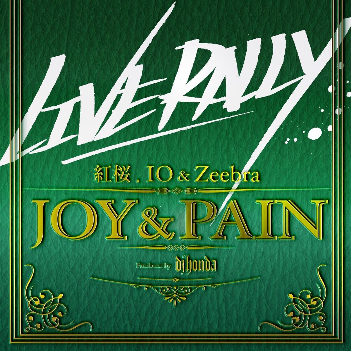 『紅桜, IO & Zeebra - JOY&PAIN』収録の『JOY&PAIN』ジャケット