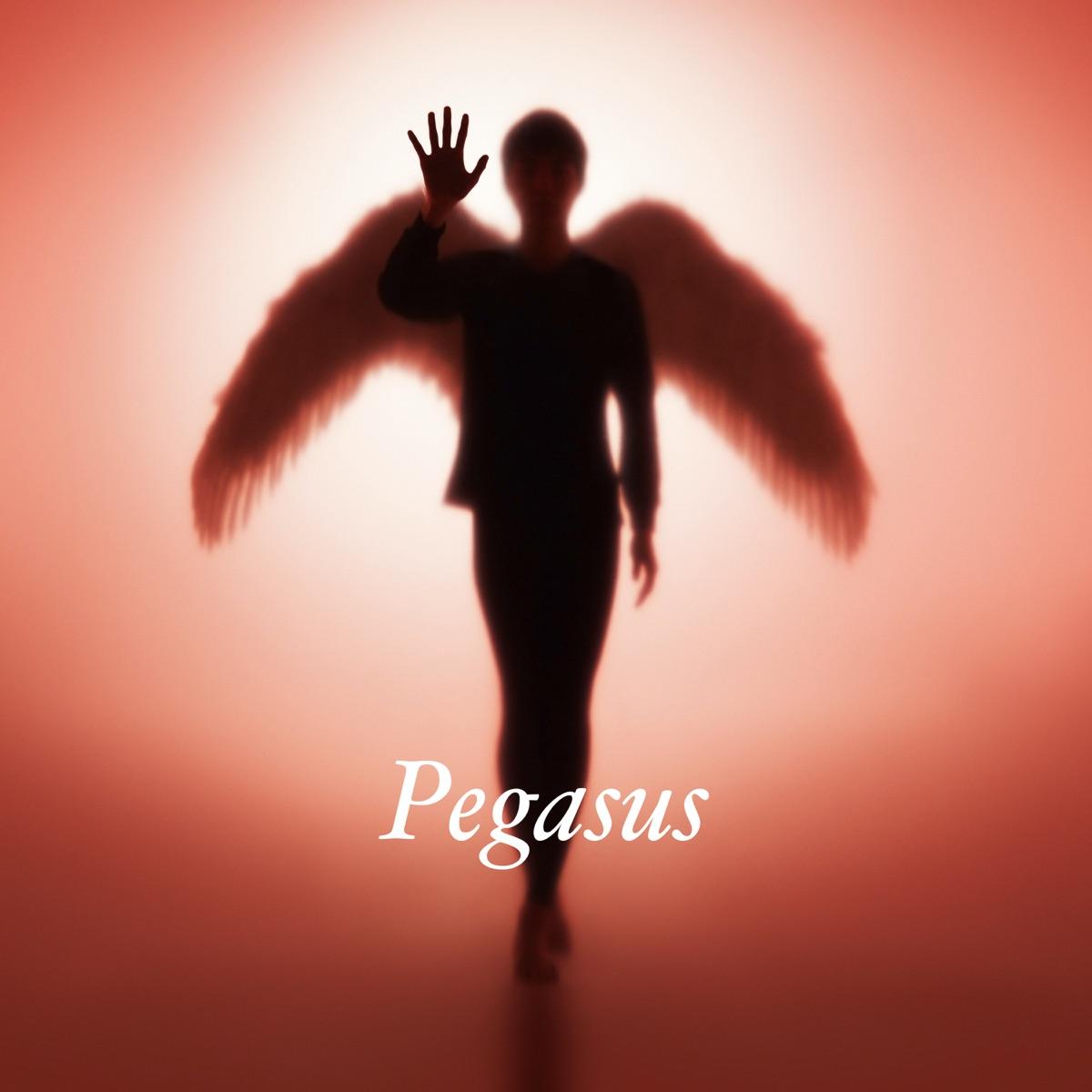 『布袋寅泰 - Pegasus』収録の『Pegasus』ジャケット