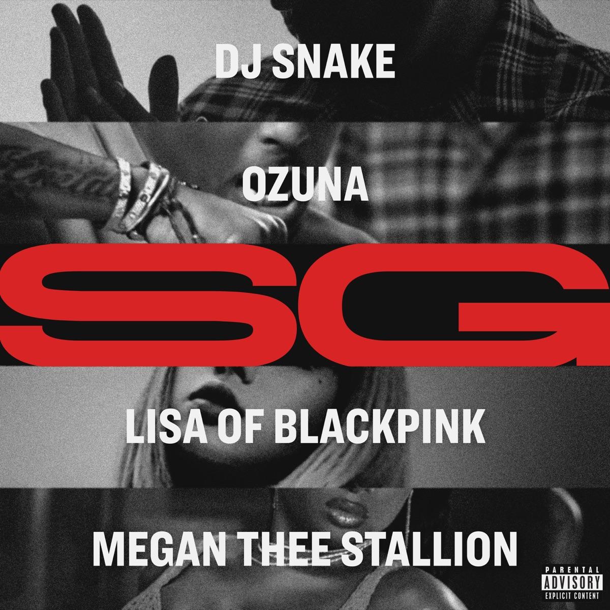 『DJ Snake, Ozuna, Megan Thee Stallion, LISA of BLACKPINK - SG』収録の『SG』ジャケット