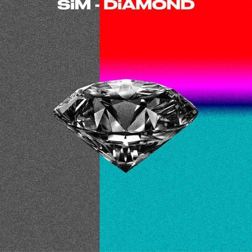 『SiM DiAMOND 歌詞』収録の『』ジャケット